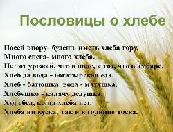 Короткие пословицы и поговорки про хлеб