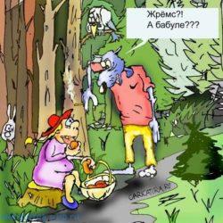 Свежие анекдоты про лес