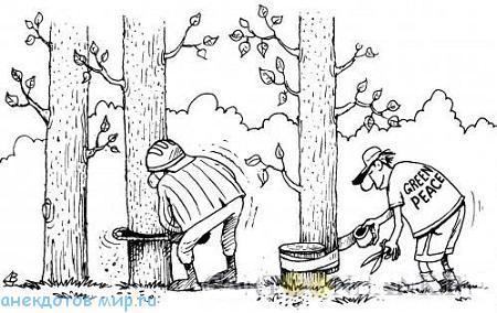 Короткие анекдоты про лес