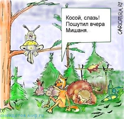 новый анекдот про лес
