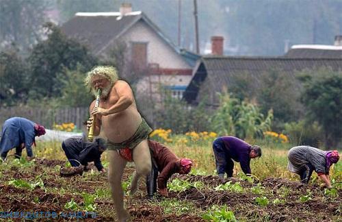 фото приколы из деревни