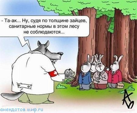 читать смешную истории из жизни про животных