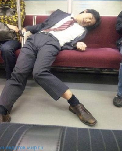 кто как спит на фото