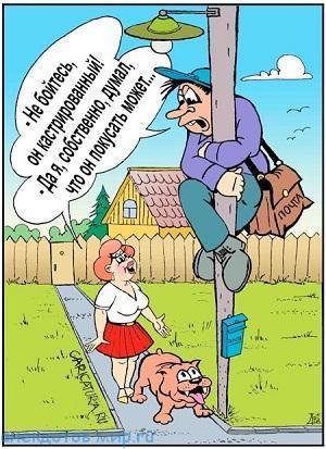 смешной до слез анекдот про баб