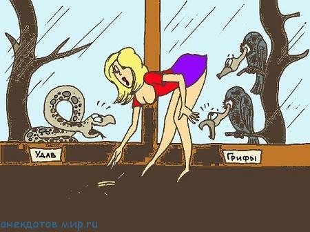 самый свежий анекдот про блондинок