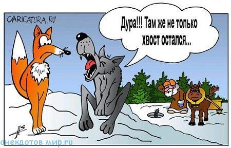 короткий анекдот про волка