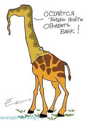 очень смешной анекдот про животных