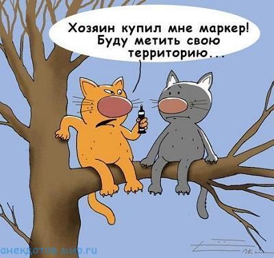 Ржачные анекдоты про животных