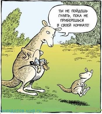 улетный анекдот про животных