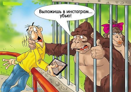 смешной до слез анекдот про зоопарк