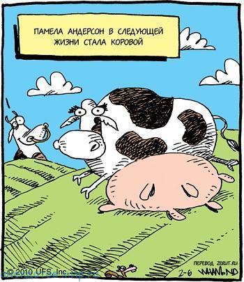 самый смешной анекдот про корову