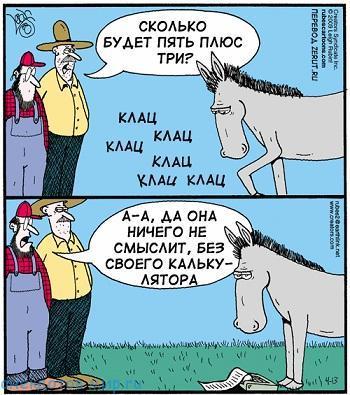 свежий анекдот про лошадь