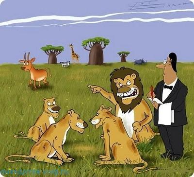Смешные до слез анекдоты про льва