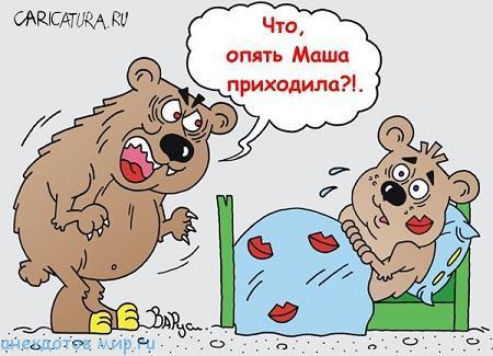 Очень смешные анекдоты про медведя
