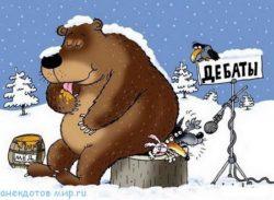 Свежие анекдоты про медведя