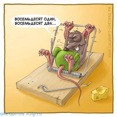свежий анекдот про мышь