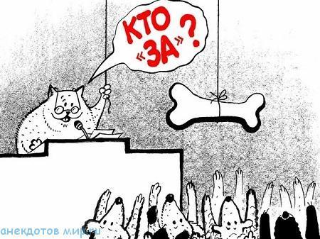 анекдот про парламент
