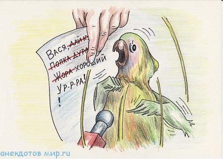самый смешной анекдот про попугая