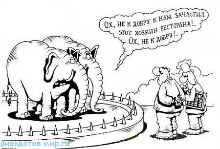 самый смешной анекдот про слона