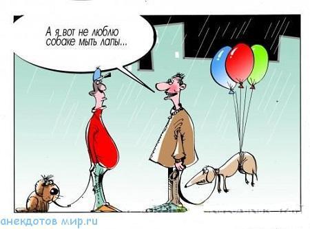 Очень смешные анекдоты про собак