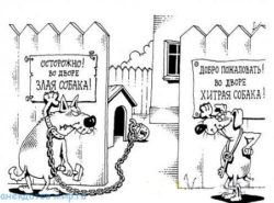 Свежие анекдоты про собак