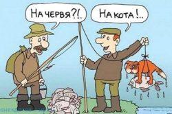 Свежие анекдоты про рыбалку
