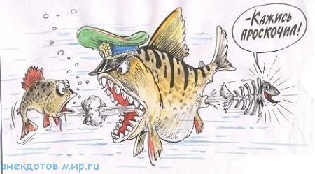 смешной до слез анекдот про рыбу