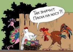 Свежие анекдоты про яйца