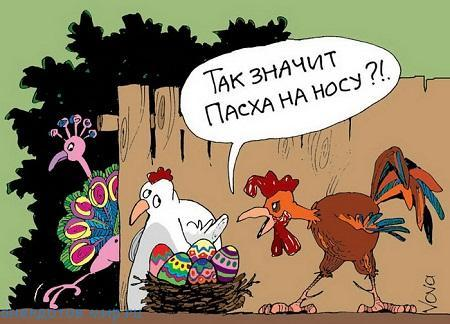 свежий анекдот про яйца