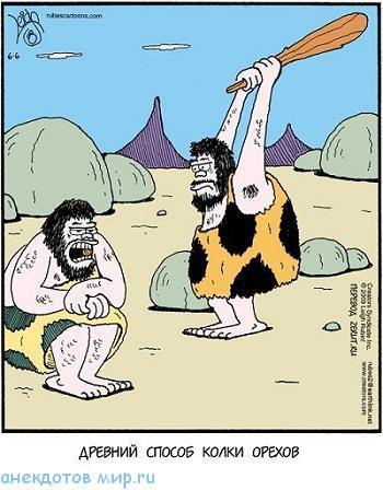 Смешные анекдоты про орехи