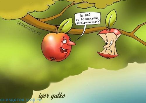 Свежие анекдоты про яблоки