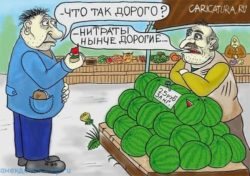 Смешные анекдоты про арбуз