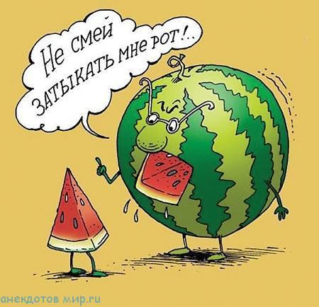 Анекдоты про арбуз