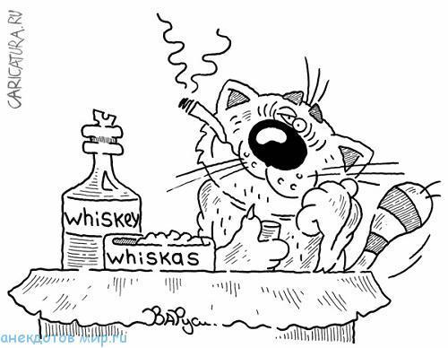 Свежие анекдоты про виски