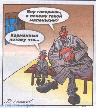 Смешные анекдоты про воров