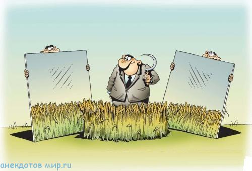 Анекдоты про зерно