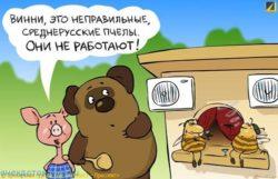 Смешные до слез анекдоты про мёд