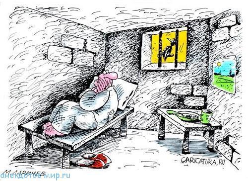 Самые смешные анекдоты про тюрьму