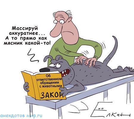 Карикатуры про животных