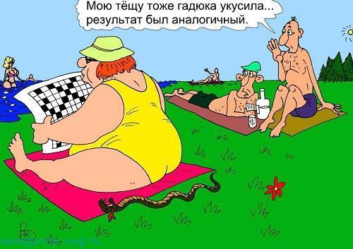 карикатура про отдых