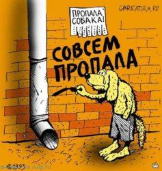 Карикатуры про собак