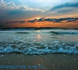 Веселые статусы про море