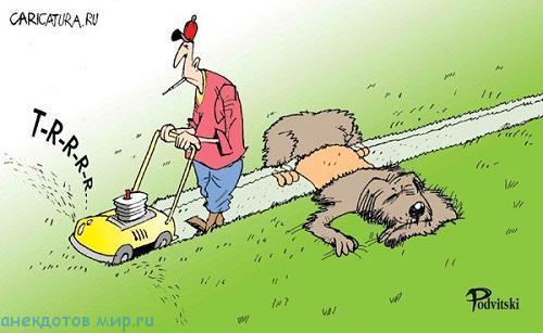 анекдот про газон