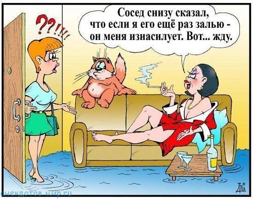 Анегдоты про жен шлюх
