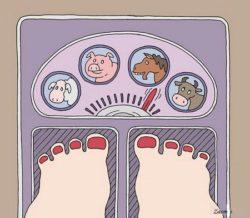 Анекдоты про килограммы