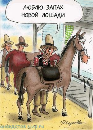 Смешные до слез анекдоты про ковбоев