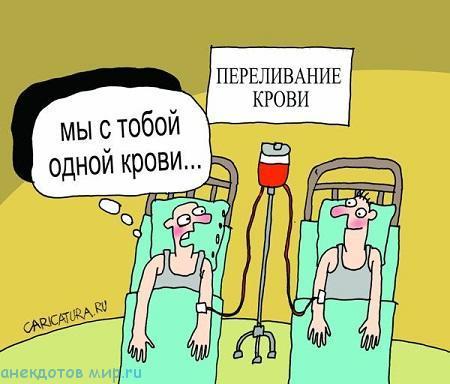 смешной анекдот про кровь