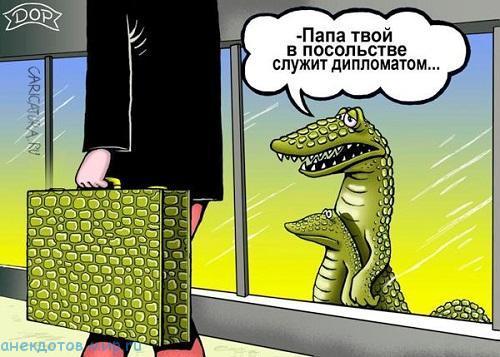 смешной до слез анекдот про крокодилов