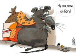Анекдоты про крыс