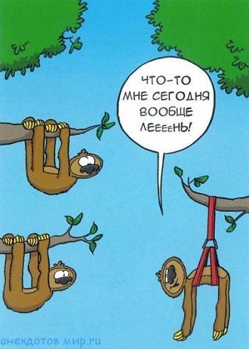 смешной анекдот про лень